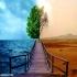 پروژه و تحقیق-مدیریت محیط زیست- در 80 صفحه-docx